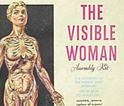 The Visible Woman in America